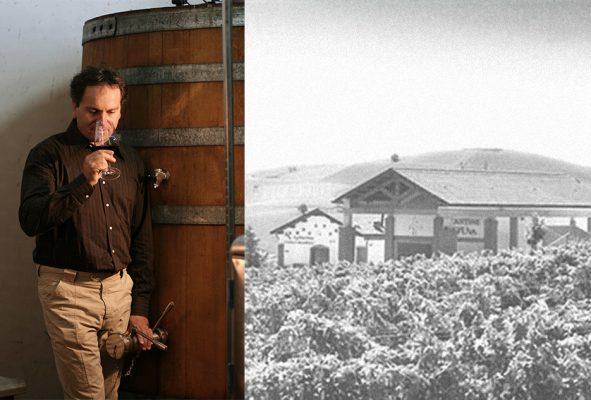 Cantine D'Uva: il vino come tradizione di famiglia!