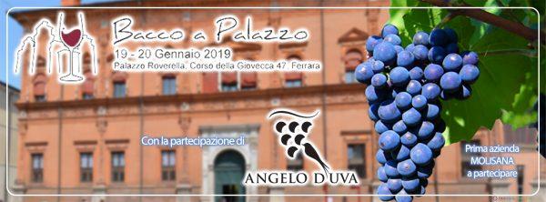 Bacco a Palazzo 2019, il Molise c'è grazie a Cantine D'Uva